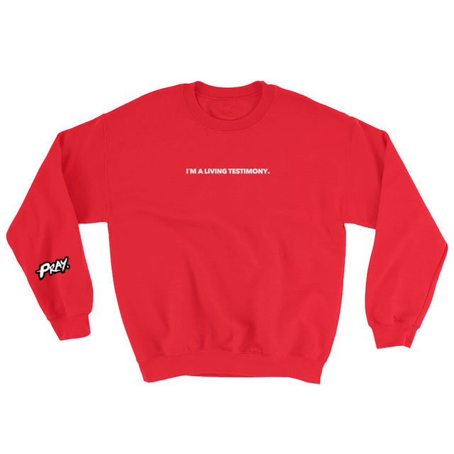 I'm A Living Testimony Sweatshirt (Assorted Colors) - Pray Period