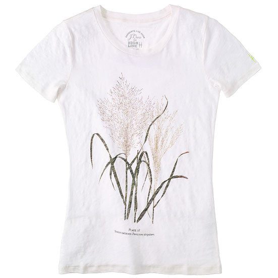 J. Crew Women's Switchgrass Tee