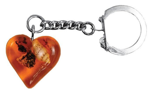 Pressed Amber Keychain - Heart Shape, 1 inch