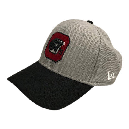 67's New Era 39Thirty Flex Cap Grey