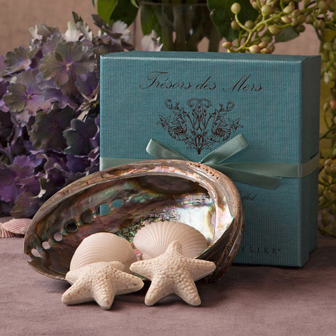 Gianna Rose Seashell Soaps with Shell Dish