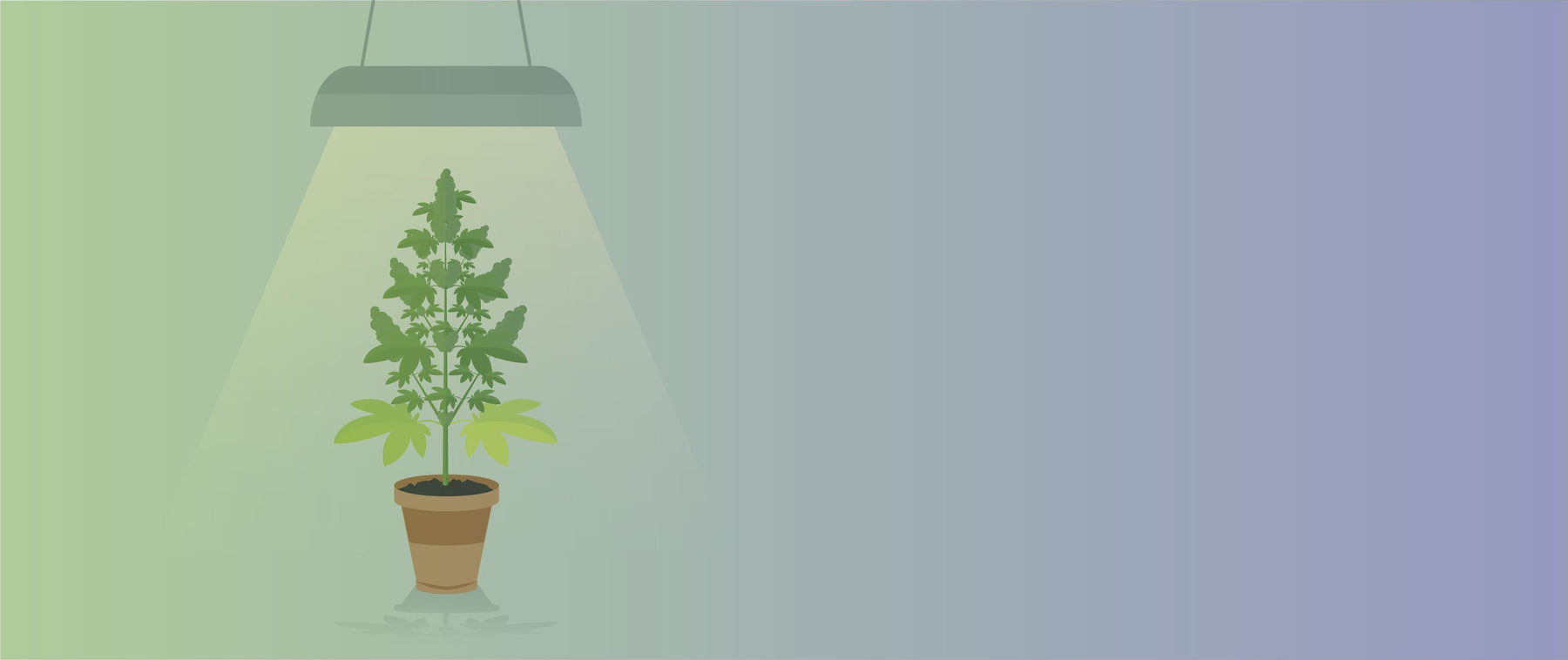 The Indoor Sun: How To Use Sunlamps For Hydroponic Gardening-HydroPros.com
