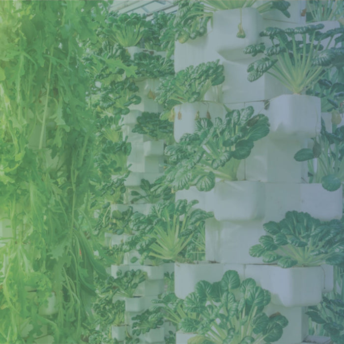 Hydroponic Systems & What's Right For You-HydroPros.com