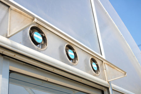 What Kind Of Ventilation Does Your Indoor Garden Need? ventilation system greenhouse