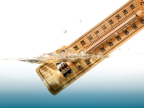 Everything You Need To Know About Water Testing thermometer testing water temp