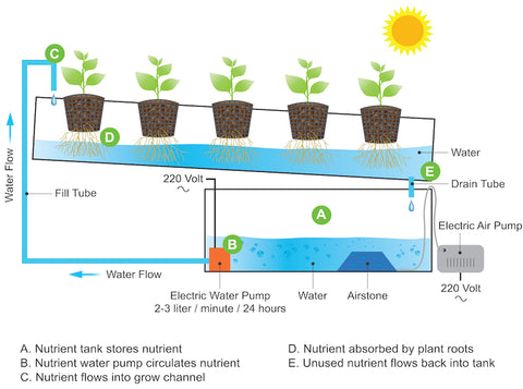 6 Types Of Hydroponic Systems And How To Choose The Right One