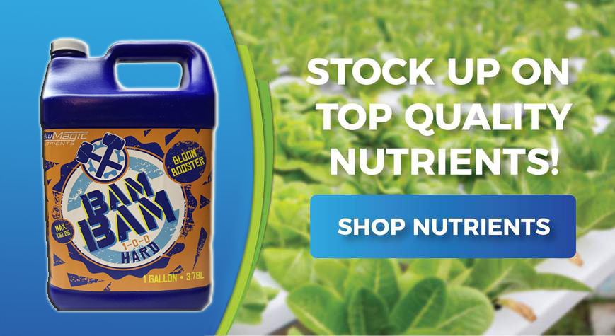 The Right Nutrients For Your Hydroponics Garden Hydropros