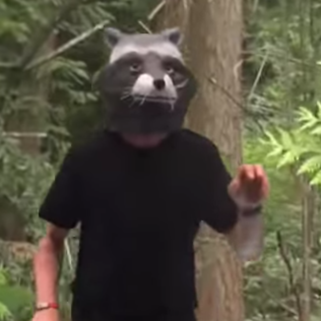 Raccoon Mask Alastair