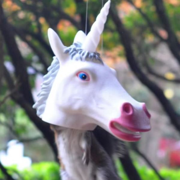 Funny Unicorn Squirrel Feeder Video - Magical Squirrel