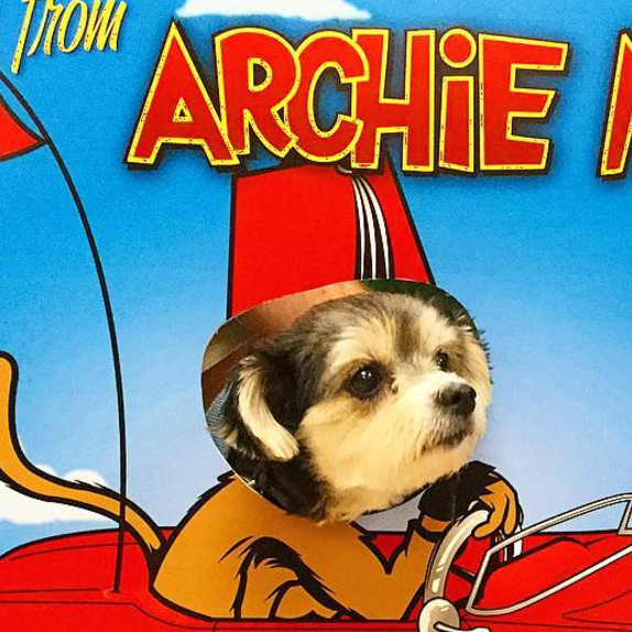 New dog photo op at the Archie McPhee store