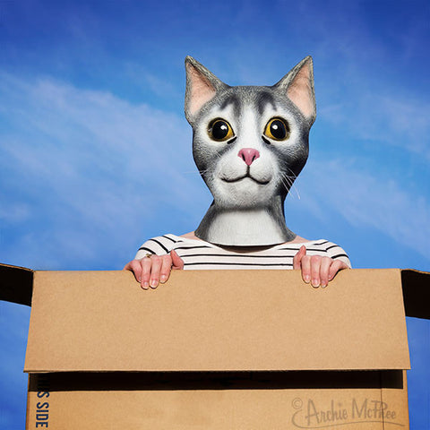 Cat Mask in box