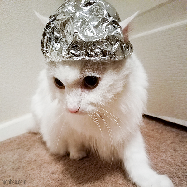 Tin Foil Hat For Cats Archie Mcphee