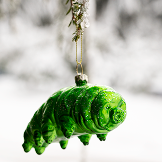 Water Bear Ornament