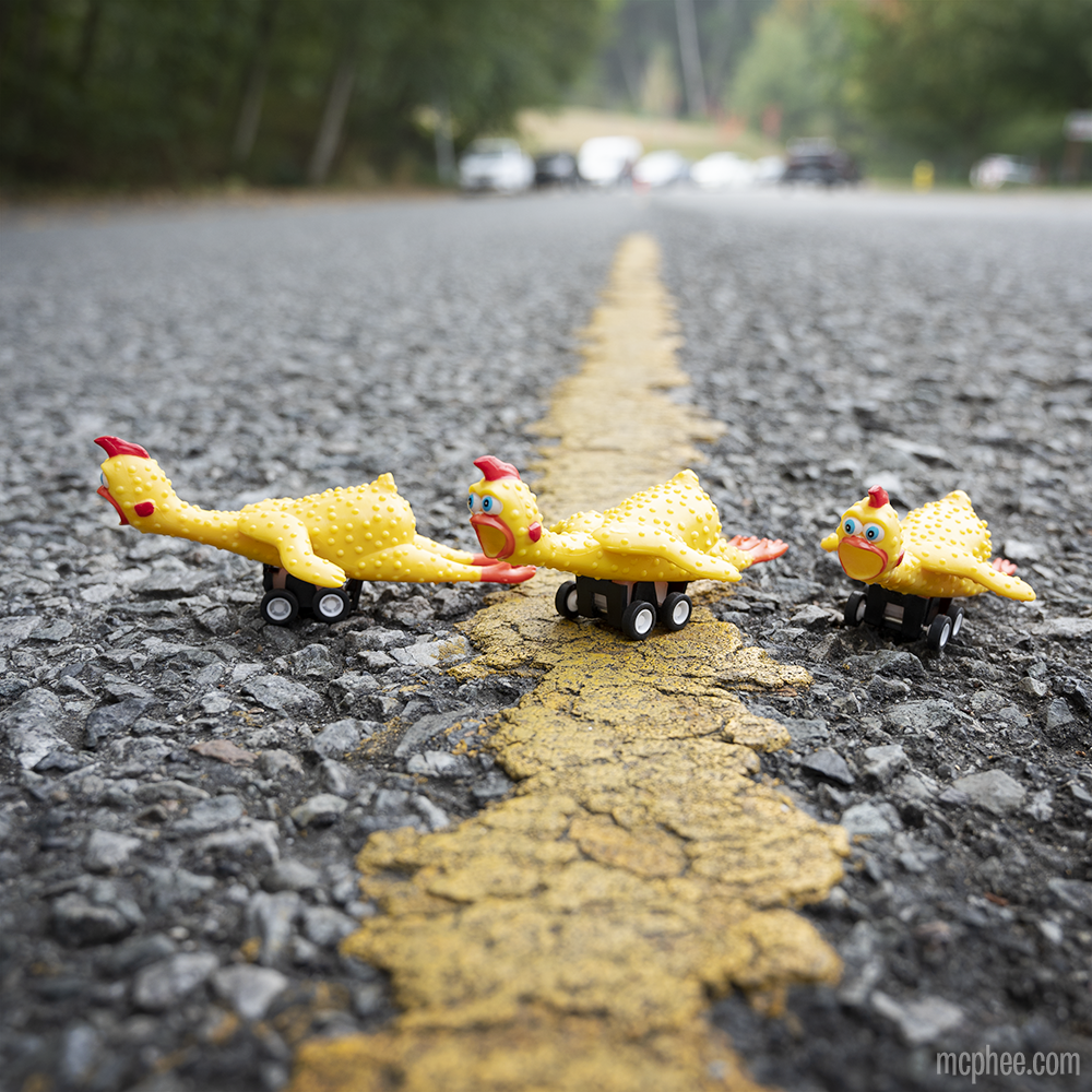 Racing Rubber Chickens - Set of 3