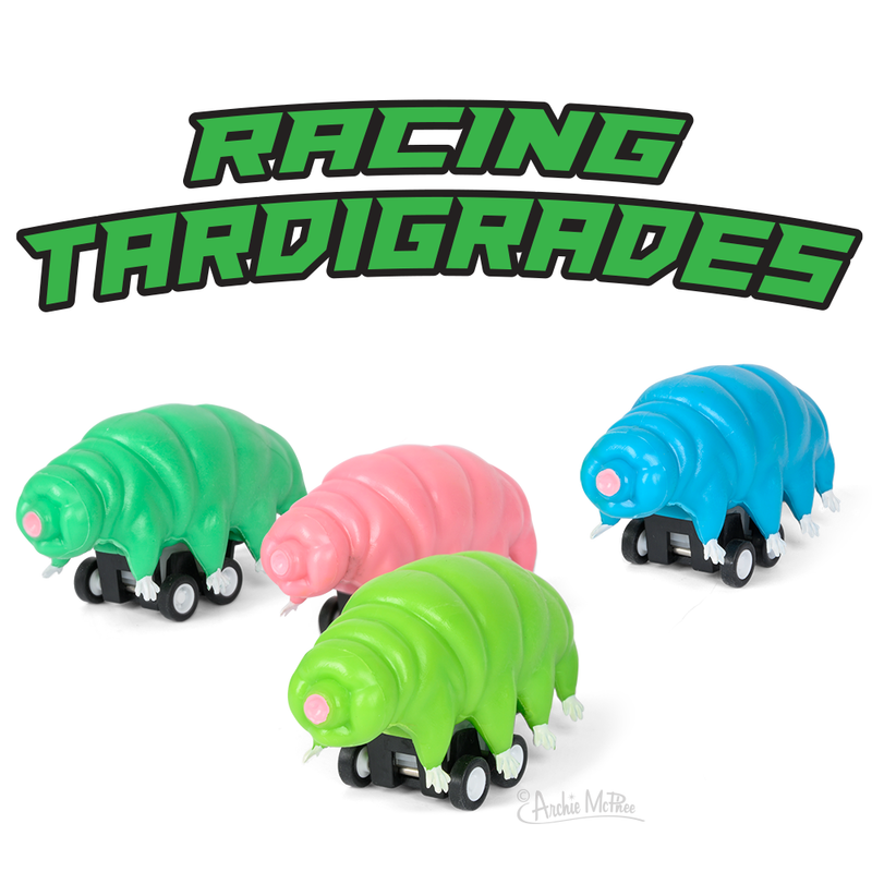 Racing Tardigrades - Set of 4
