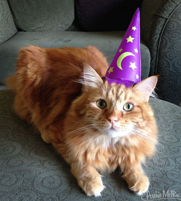 Inflatable Wizard Hat for Cats-Archie McPhee