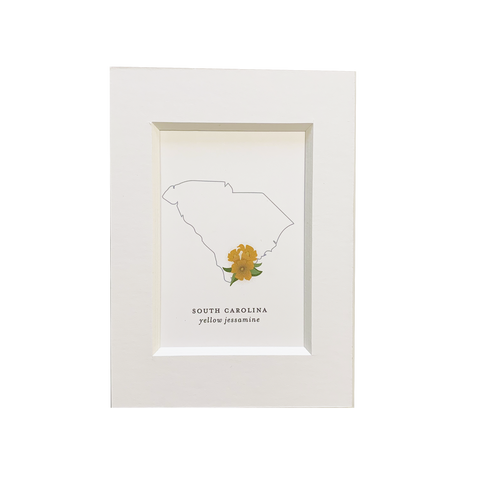 South Carolina State Flower Print