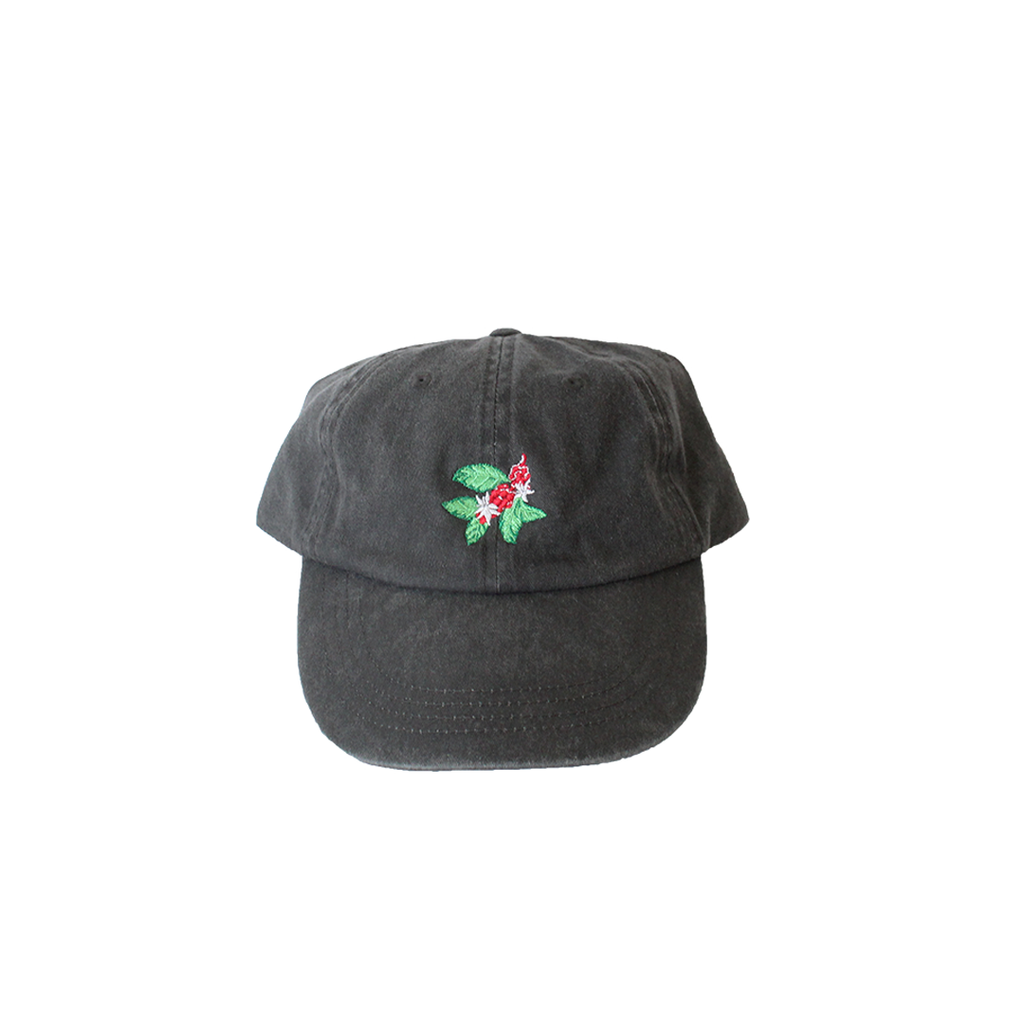 Coffee Cherry Dad Hat