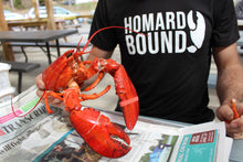 Load image into Gallery viewer, Homard Bound Men's Tee By Sandy Toes Shop