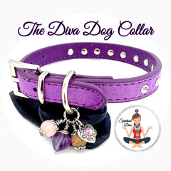 Spiritual Diva Purple Dog Pet Cat Reiki Dog Collar