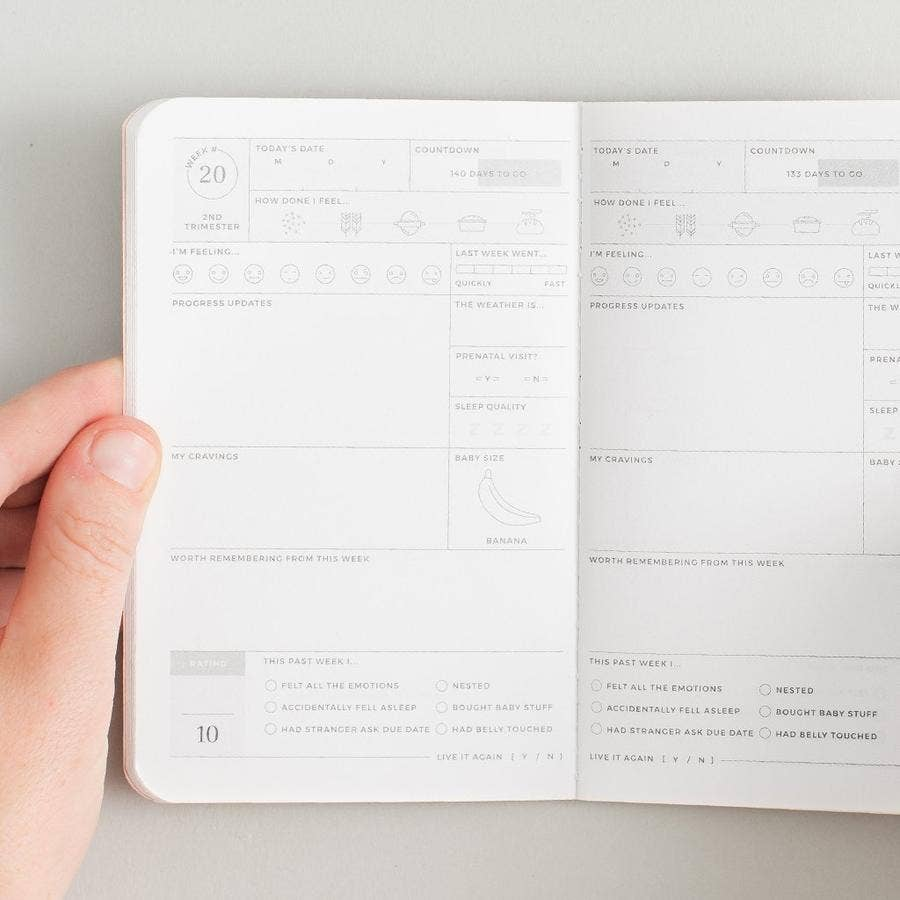 Pregnancy Passport Journal