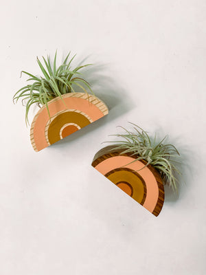 Open image in slideshow, Rainbow Air Plant Holder, Air Plant Included