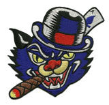 cigar cat patch image