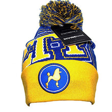 Load image into Gallery viewer, SGRHO Beanie 2