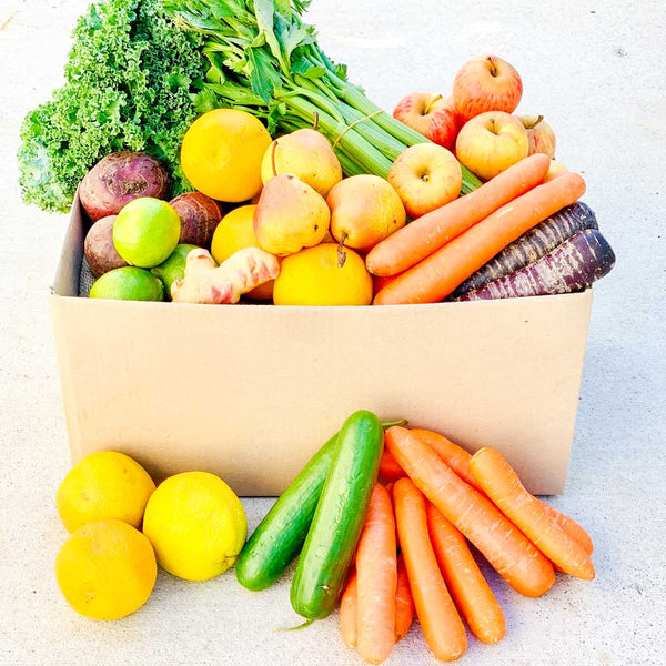 Seasonal Juicing Box Large