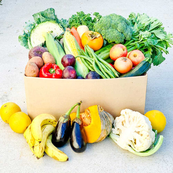 Seasonal Fruit & Veg Box Large