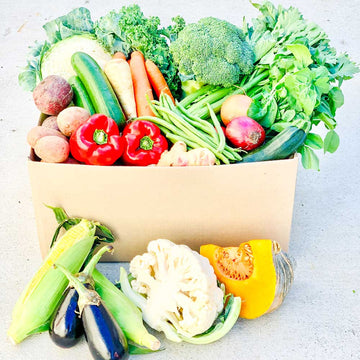 Seasonal Veg Box Large