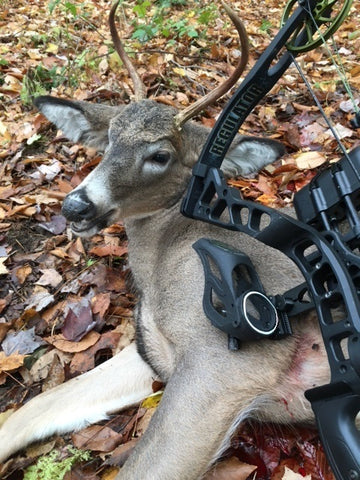 Buck shot by Mike Mancy with the PeriSight - Fall 2016.