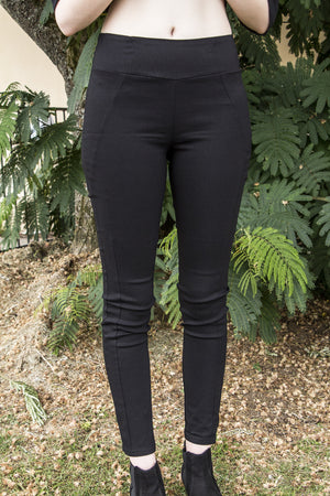 High Rise Skinny Stretch Pant