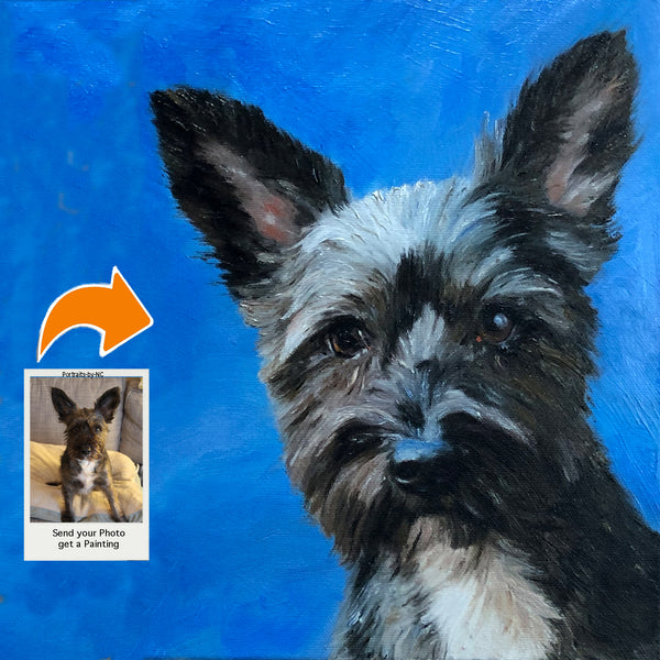Portrait of a Mixed Terrier