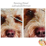Labradoodle Portrait Detail Shots