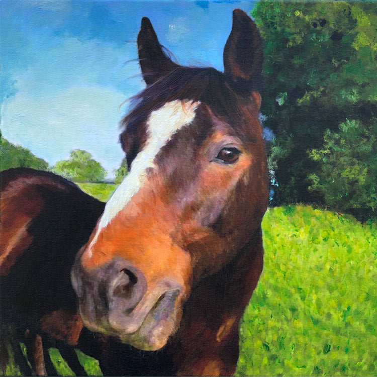 Portrait of a Quarter Horse
