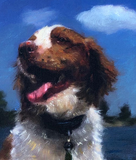The Portrait of Daisy the Irish Setter is Finished