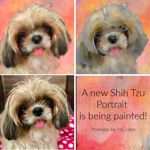 Painting a new Digital Shih Tzu Portrait