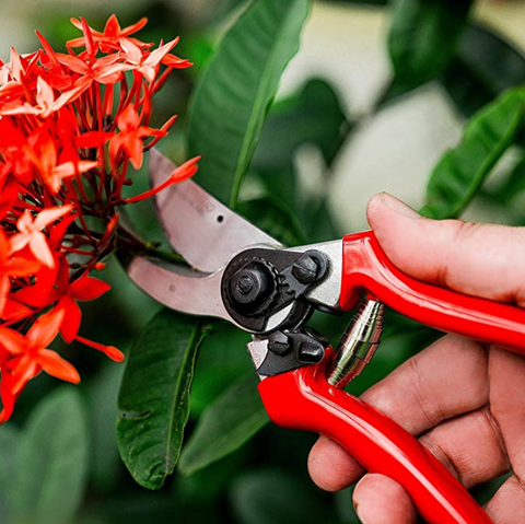 Green Heart Pruning Shears