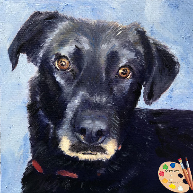 Black Labrador Oil Portrait