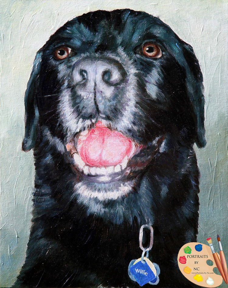 Black Lab Portrait