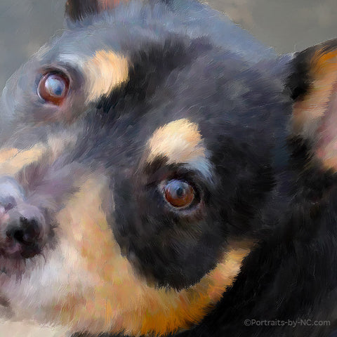 A Posthumous Dog Portrait