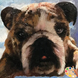 Small 4x4in Bulldog Portrait 546