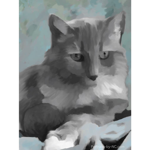 Cat Pet Portrait in Progress