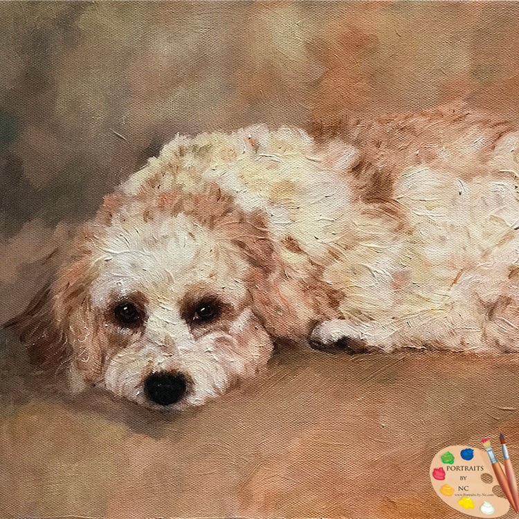Cavachon Dog Portrait
