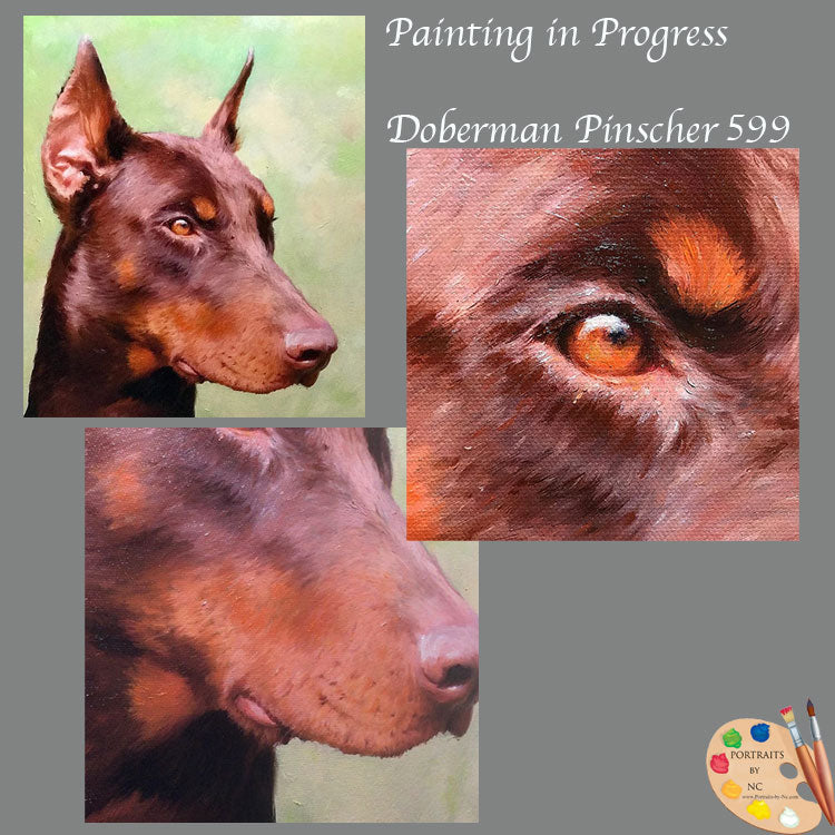 Doberman Pinscher Painting 599 Almost Finished