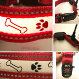 Big Smile Pet Dog Collar