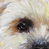 Shih Tzu Portrait in Oil 689