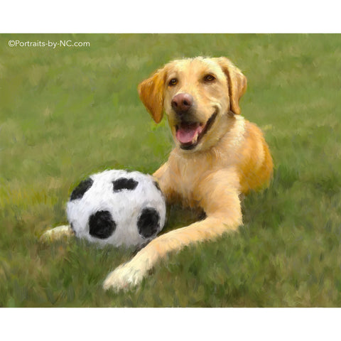 Golden Retriever with Soccer Ball 688