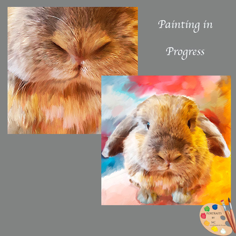 Holland Lop Painting in Progress 601